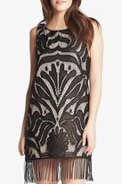 Tart Collections Liv Dress