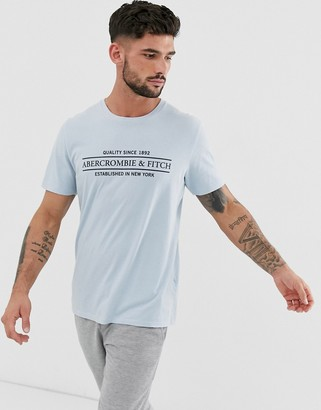 Abercrombie & Fitch address logo print t-shirt in light blue