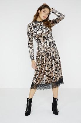 Girls On Film Narcissa Floral Print Velvet Midi Dress