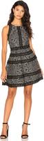 Parker Garnet Dress
