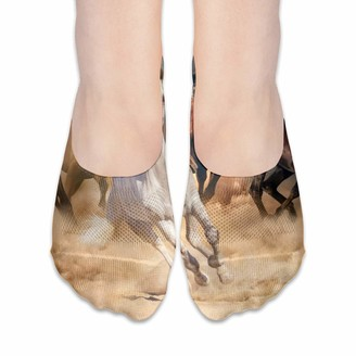 Cool Show Socks For Women Horses Running In The Desert Low Cut Sock Liners Invisible Socks