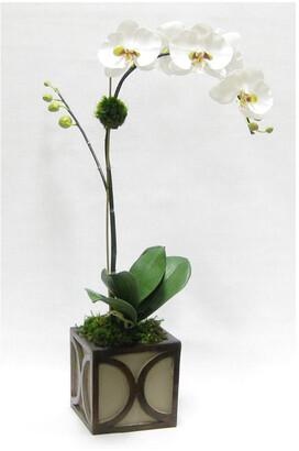 Bougainvillea Artificial Orchid Mini Wooden Square Container