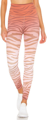 Beach Riot Jungle Piper Legging