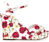 Dolce & Gabbana daisy and poppy print sandals