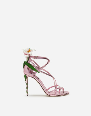 Dolce & Gabbana Mordore Nappa Sandals With Lily Embroidery