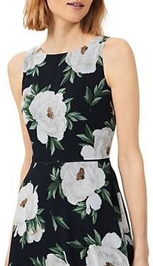 Hobbs London Carly Floral Print Dress