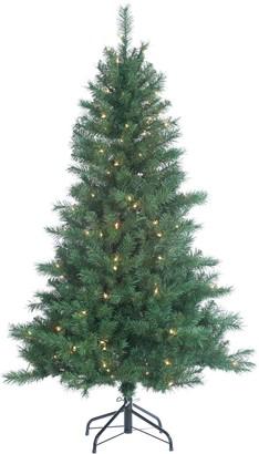 Sterling 5' Colorado Spruce Artificial Christmas Tree