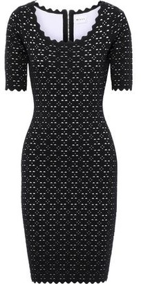 Milly Scalloped Laser-cut Ponte Dress