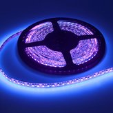 Joygo 5m 12V 3528 Waterproof 600 UV Ultraviolet LED Black Lights Night Fishing Strip Lamp by Joygo