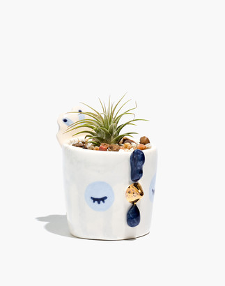 Madewell Scavenge + Bloom Hen Dream Companion Mini Planter