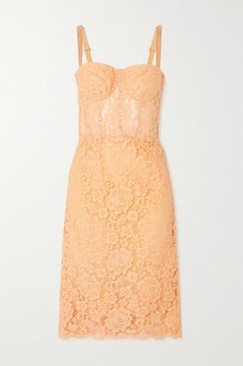 Dolce & Gabbana Cotton-blend Corded Lace Midi Dress - Coral