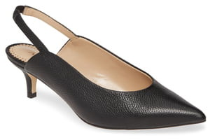 Celine Allegra James Pointed Toe Slingback Pump