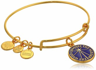 Alex and Ani Replenishment 19 Women's Harry Potter The Wand Chooses Wizard Charm Bangle