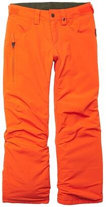 Burton Barnstorm Pants (Little Kids/Big Kids) (Bog Heather) Boy's Casual Pants