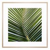 United Artworks Cocos Giclee Print With Frame