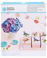 Martha Stewart Crafts Crafter's Clay Starter Kit, Nature, Free Shipping,
