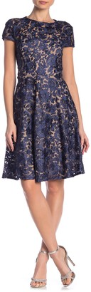 Marina Lace Fit & Flare Dress