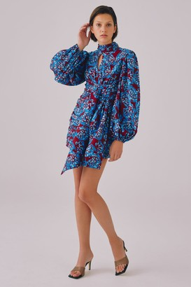 C/Meo SOUND ADVICE LONG SLEEVE DRESS Berry Brushed Floral