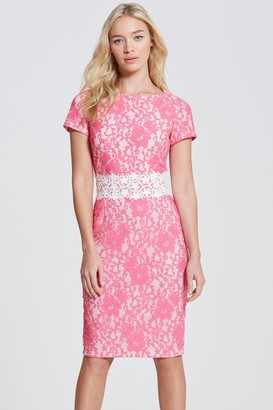 Paper Dolls Pink Lace Bodycon Dress