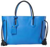 Longchamp Pnlope Fantaisie Medium Leather Tote