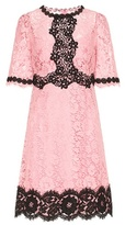 Dolce & Gabbana Lace cotton-blend dress