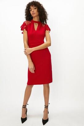 Coast Lace Cap Sleeve Shift Dress