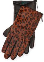 Ralph Lauren Leopard Haircalf Zip Gloves