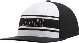 STAGE DIVE FLATBILL FLEXFIT Hat