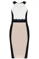Quiz Cream Contrast Panel Lace Midi Dress