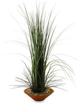 Bed Bath & Beyond D & W Silks 40-Inch Tall Onion Grass in Brown Bowl
