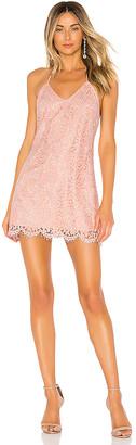 NBD Acadia Dress