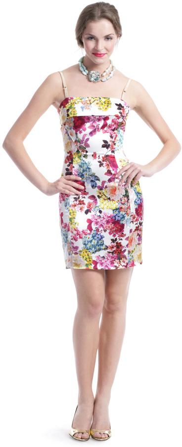 Dolce & Gabbana by Botanical Beauty Dress