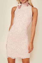 Nightcap Clothing Blush Lace Mini Dress
