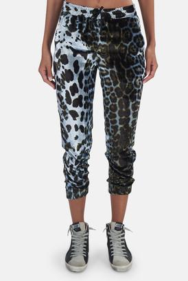 R 13 Harem Blue Leopard Jogger