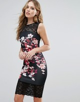 Lipsy Floral Print Pencil Dress With Lace Inserts
