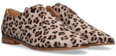 Maruti Leopard Pemm Brogue - 39 - Brown/Natural