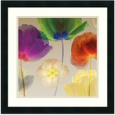 Rob-ert Robert Mertens Poppy Panorama I Framed Art