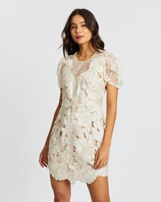 Elliatt Ambient Dress