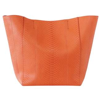 Celine Cabas Phantom Orange Exotic leathers Handbags