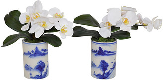 White Orchid Set of 2 11 Arrangements - Faux - The French Bee