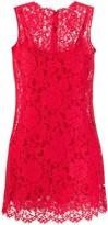 Dolce & Gabbana A-line scalloped lace dress