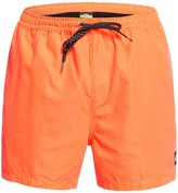 Quiksilver Everyday Swim Shorts
