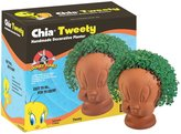 Looney Tunes Chia Tweety Handmade Decorative Planter, Looney Tunes, 1 Kit