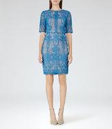 Reiss Zola Lace Dress