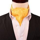 Alizeebridal Men's Jacquard Woven Cravat Tie Ascot