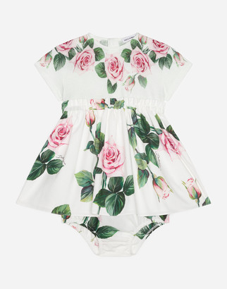 Dolce & Gabbana Dress In Jersey And Poplin With Tropical Rose Print
