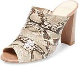 Alexandre Birman Women's Leather High Heel Peep-Toe Mule