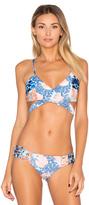 Maaji Golly Wolly Jelly Bikini Top