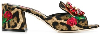 Dolce & Gabbana rose print sandals