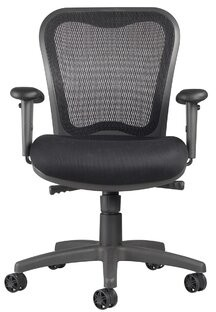 Symple Stuff Barrera Ergonomic Mesh Task Chair Upholstery Color: Mystic Black